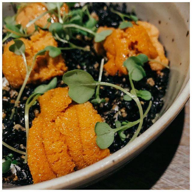 Perfect way to end the week—Sea Urchin X Yellowtail X Beef Tartare X Lobster X Lamb X Pork Belly X Lamb X Ginger Panna Cotta