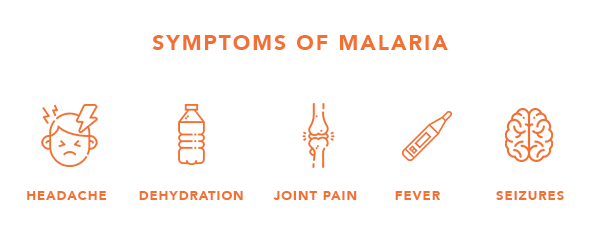 symptoms of malaria.png