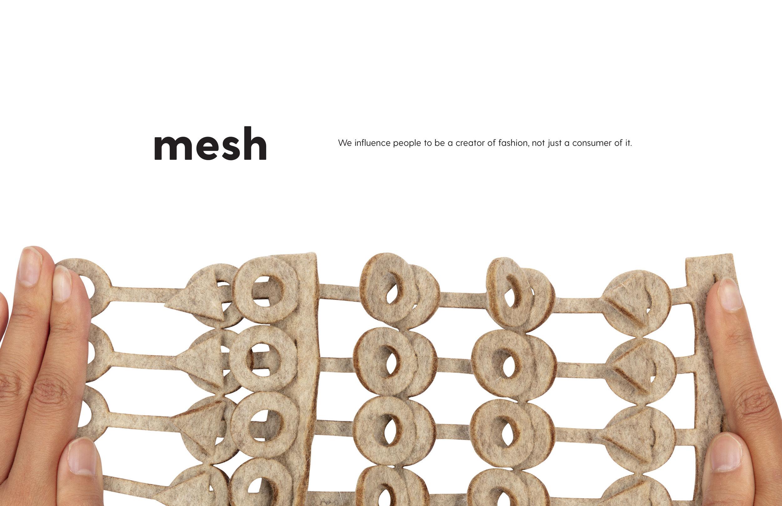 mesh_linkedin_pdf-01.jpg
