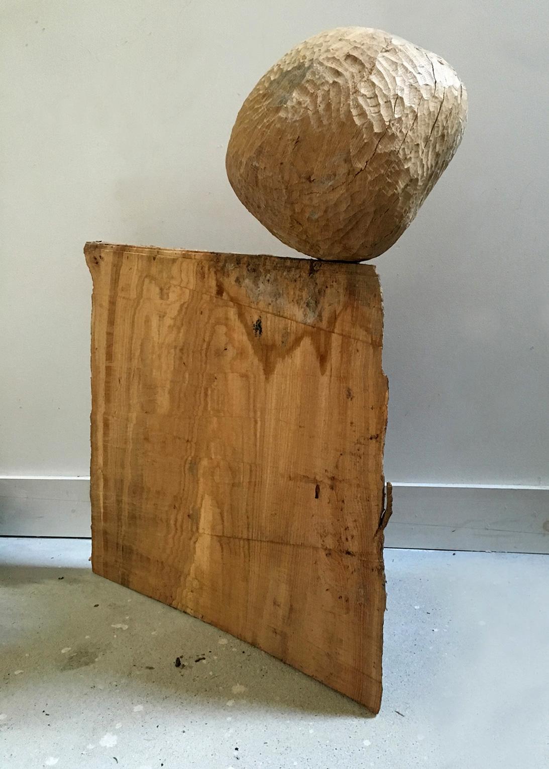 Hysteresis , oak and cedar , 2016