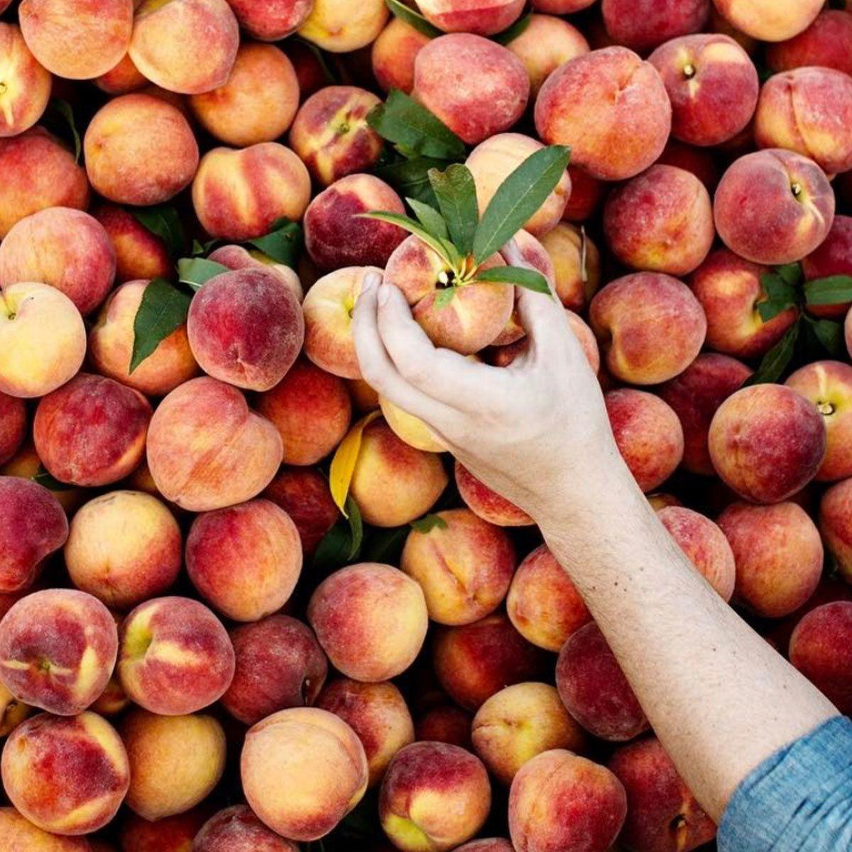 The Peach Truck