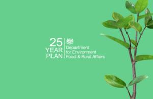 25 year plan.png