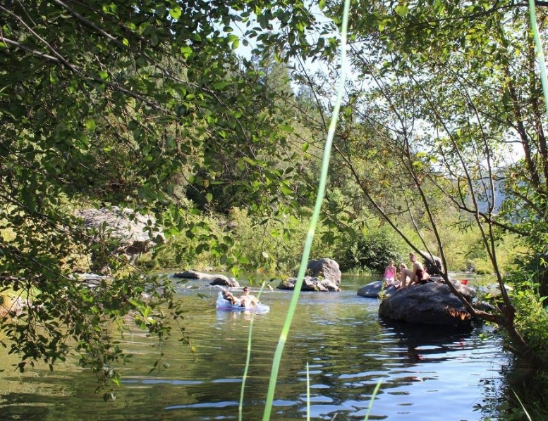 Cool off with a dip in the Feather River, just at the bottom of town.