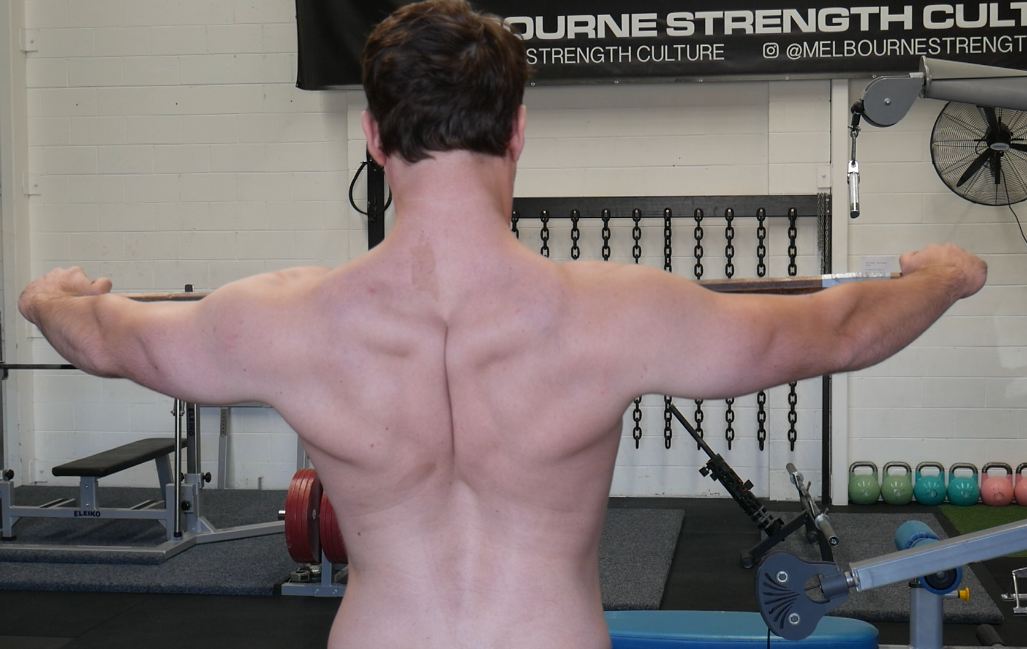 Upper Back/ Scapulae position throughout the bench press, dumbbell press and their variations
