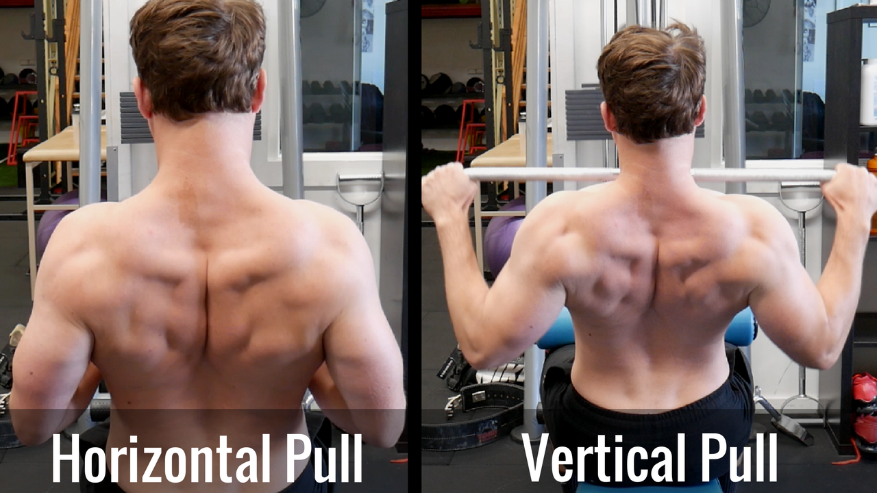 Upper Back/ Scapulae position throughout all bilateral rowing variations