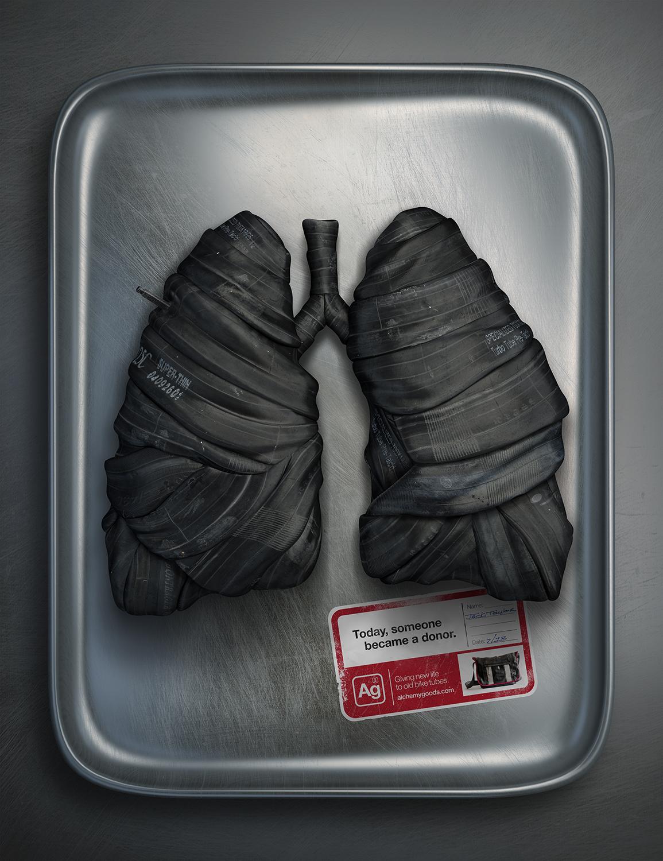s03_Lungs_FINAL.jpg