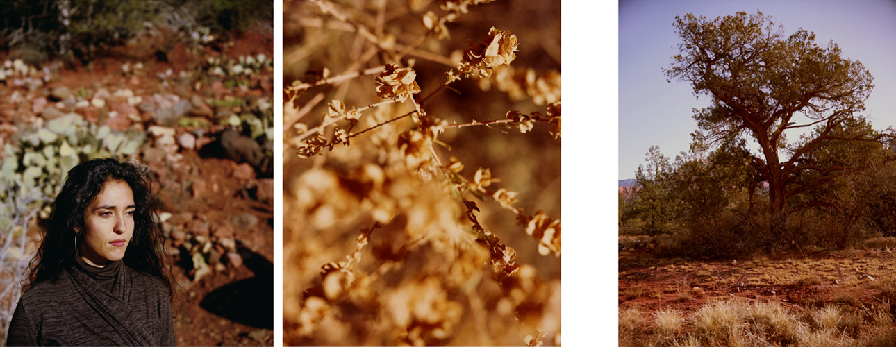V,  Archival Pigment Print, 20x16 inches each (Edition of 5)  & 40x32 inches each   (Edition of 3)