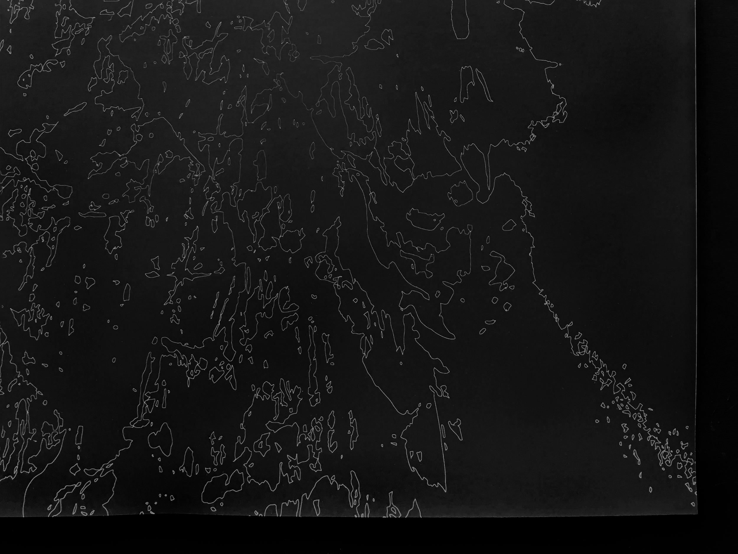 2-DisappearingLandscape10_Detail©AndreanneMichon2019.jpg