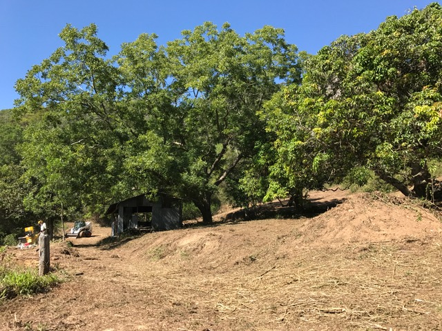 clearing the way for Ecozoic Living