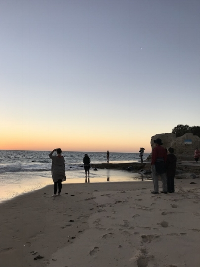 CCP is a partner in delivering a program called Located! Being Onkaparingan - helping people connect to people & planet in their particular place (a  beautiful and naturally diverse region  south of Adelaide, South Australia)