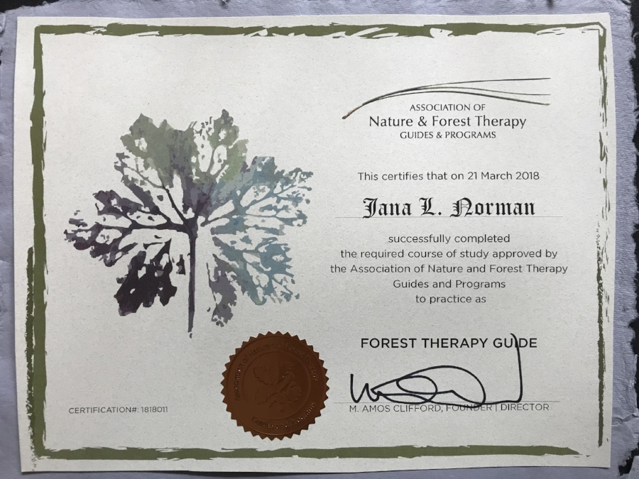 forest bathing certificate.jpg