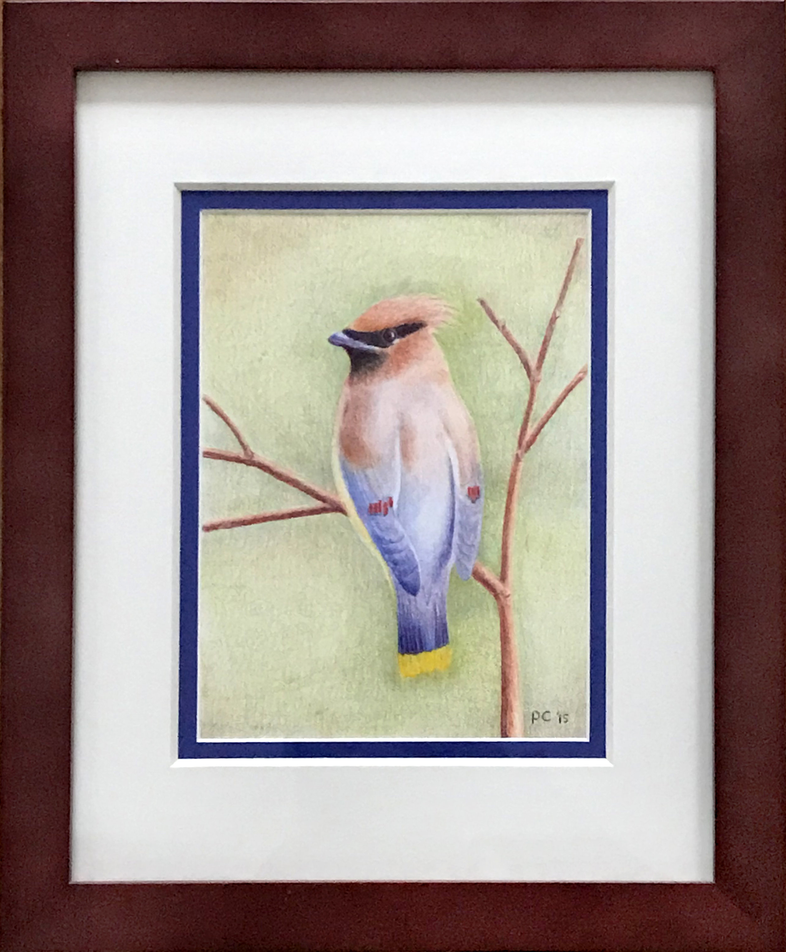 - Patrick CalkinsCedar Waxwing2015Colored pencil on paper9 1/2 x 7 inches