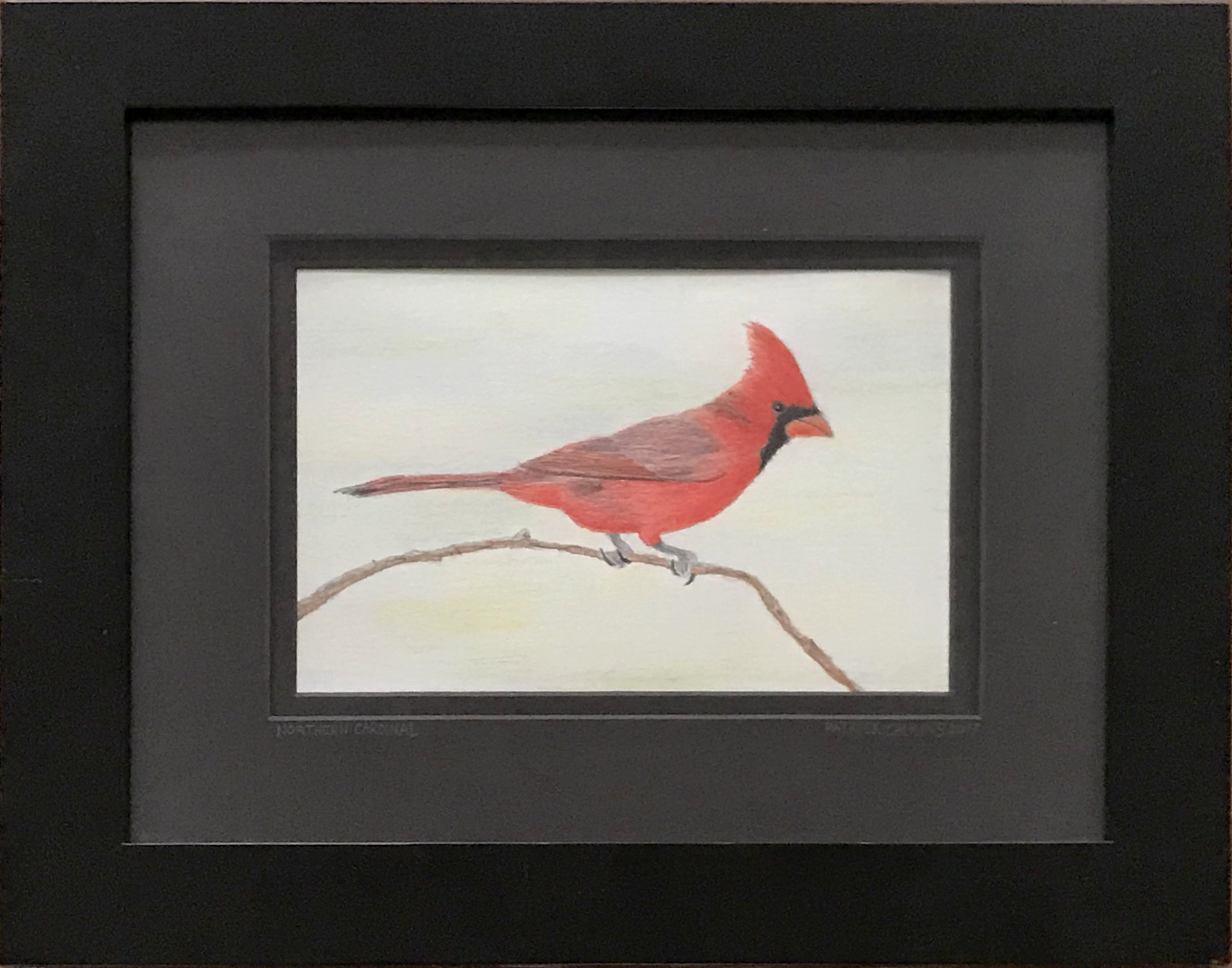 - Patrick CalkinsNorthern Cardinal2016Colored pencil on paper5 x 7 inches