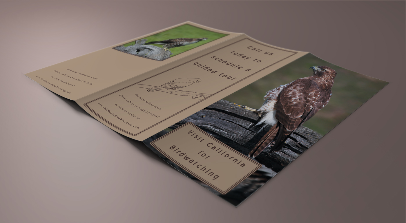 Brochure_05_soft.jpg