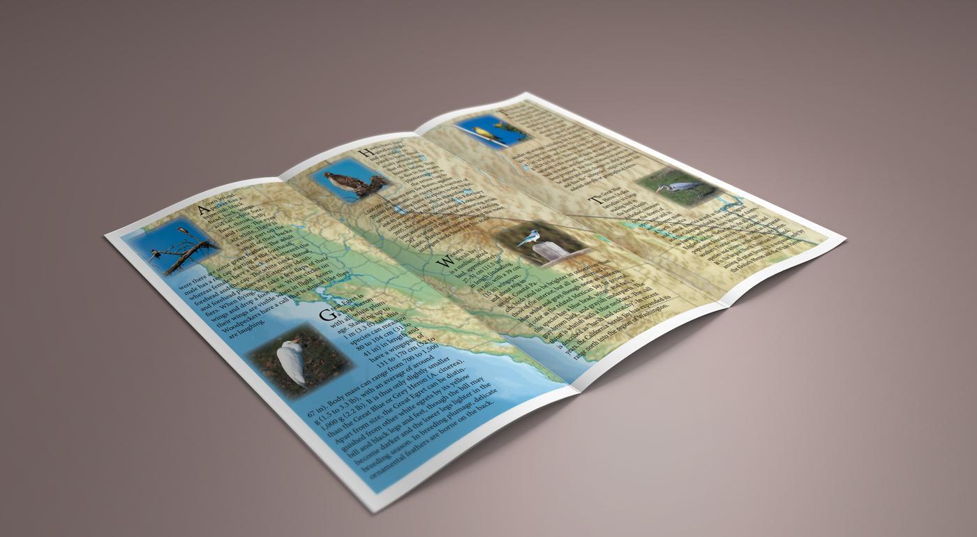 Brochure_03_soft.jpg