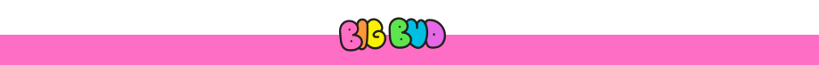big-bud-press-logo