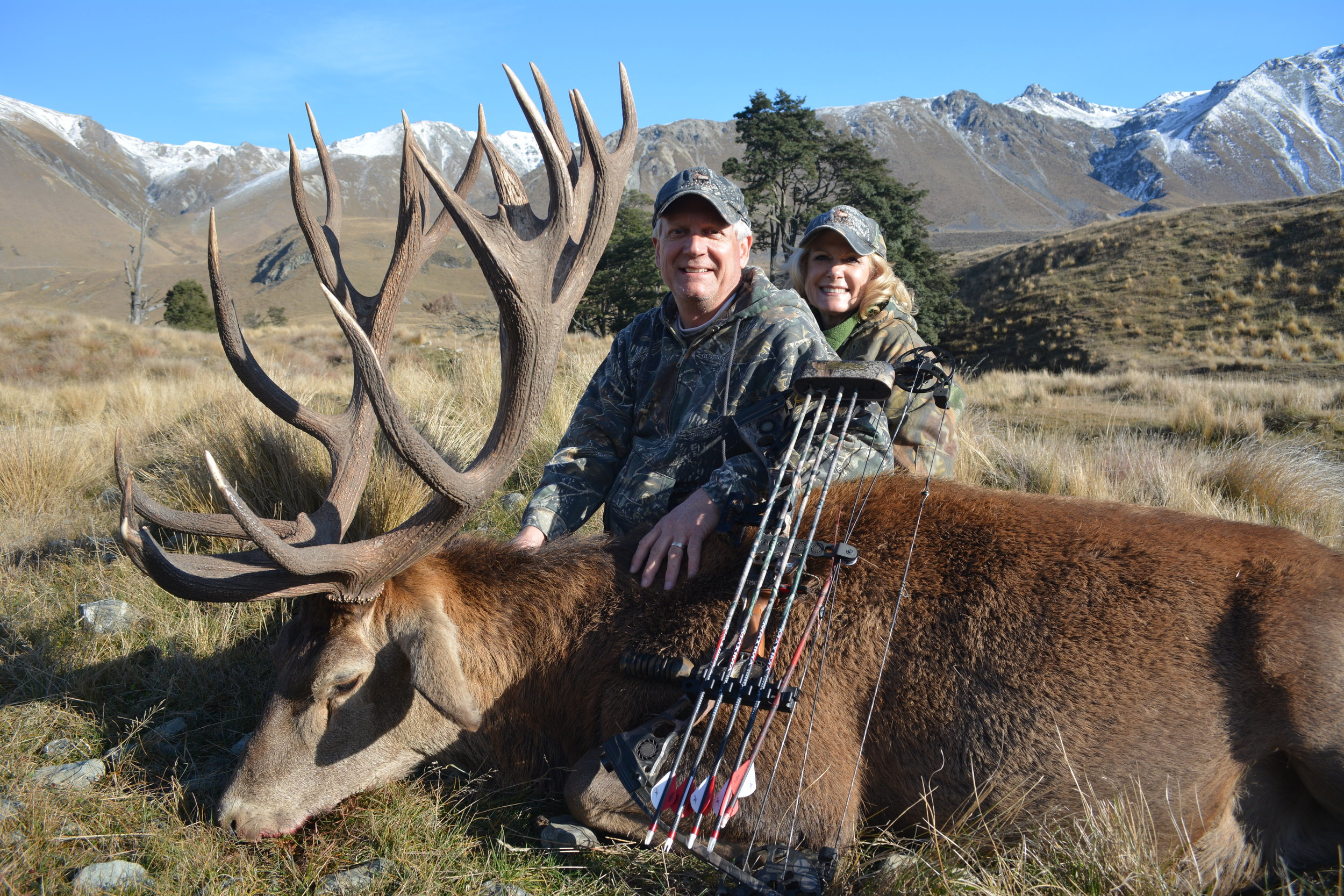 Quality Red Stag hunts available