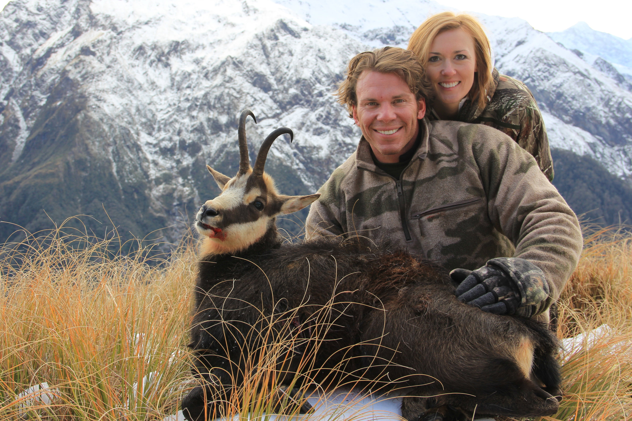 winter hunted Alpine Chamois