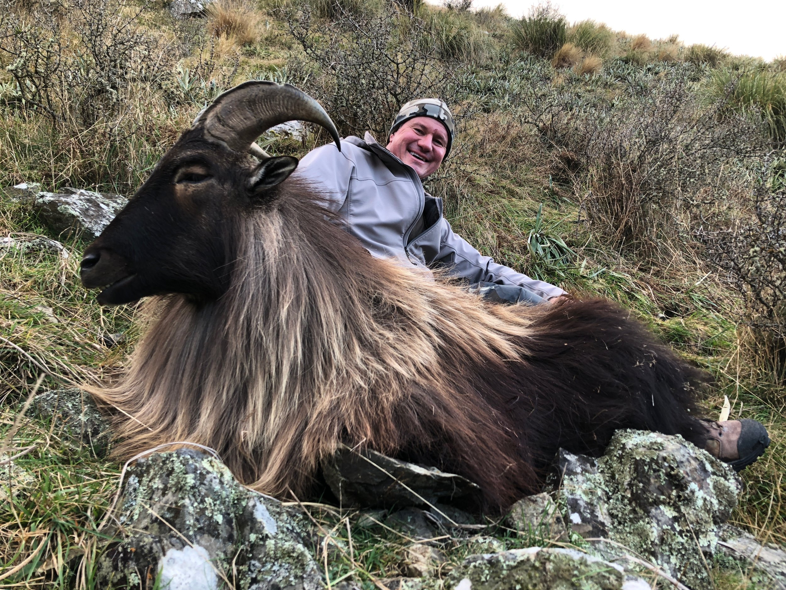 Spring Tahr hunt - Season: 1st August - 30th October each year$4950/per hunter (minimum 2 hunters)5 days | 4 nightsExceptional post rut bull Tahr foot hunting. See mobs of multiple bulls. The bulls are in full winter skin and make for an outstanding trophy mount. Add management nanny Tahr for $1000 trophy fee.Limited number of Chamois permits available also.CONTACT US FOR 2019 & 2020 SPRING HUNT OPPORTUNITIES