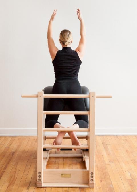 Swan on Ladder Barrel