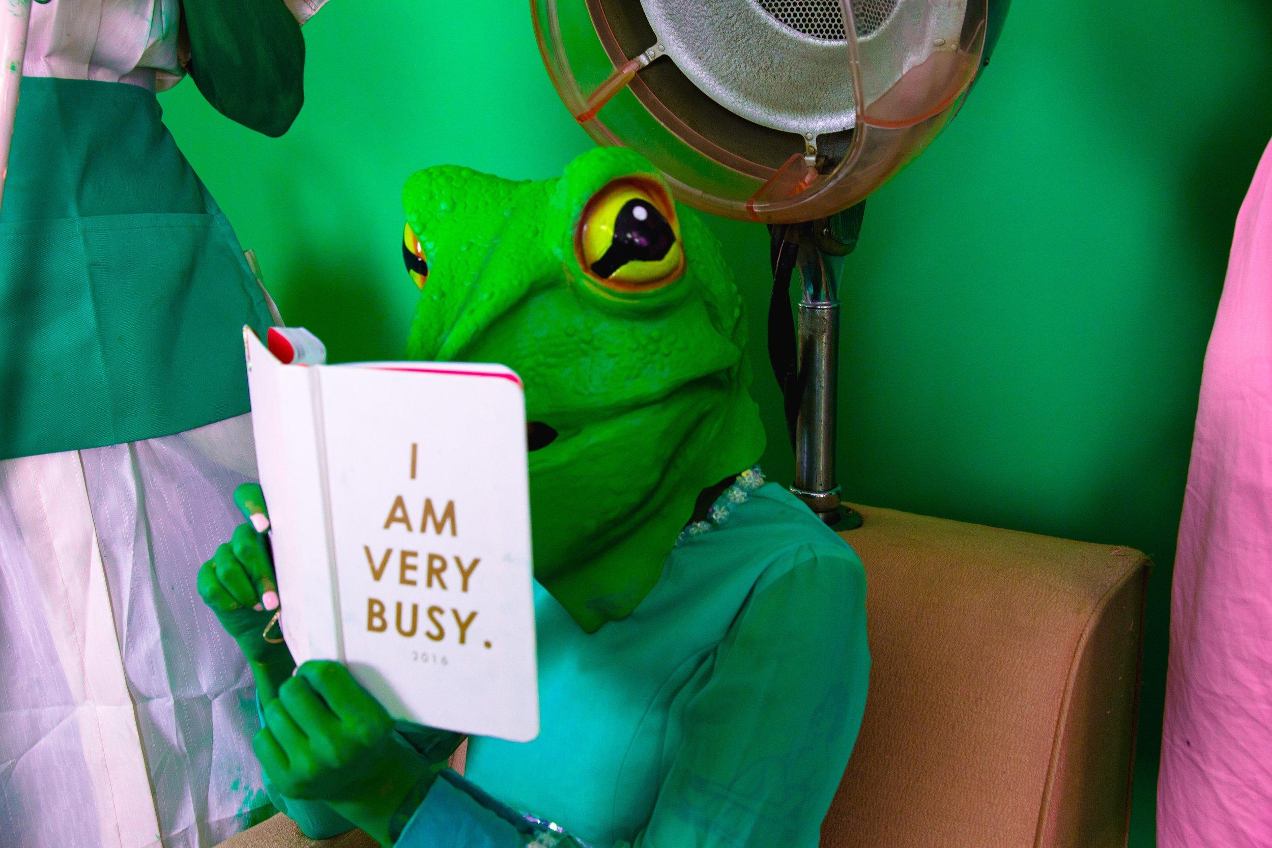 salon frogs (dslr)-7715.jpg.jpeg