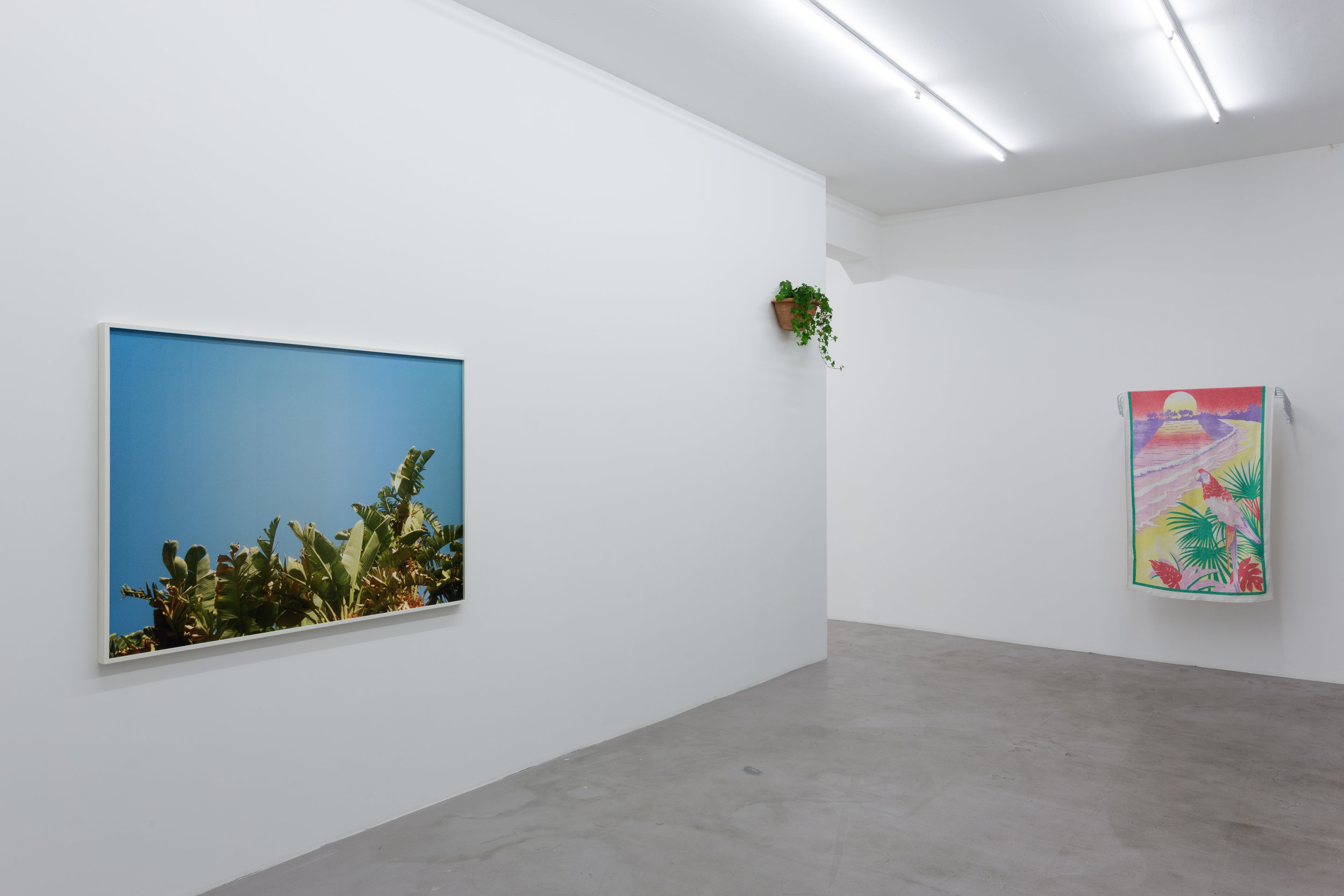 "Installation view, Talisa Lallai ""Lento Violento"", BolteLang, Zürich. Photo by Alexander Hana, © Talisa Lallai, Courtesy of BolteLang"