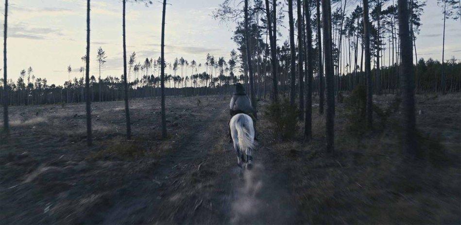 Agnieszka Polska.  The Demon's Brain , 2018. Multichannel video installation, film still © Agnieszka Polska, Courtesy ŻAK | BRANICKA, Berlin and OVERDUIN & CO., LA