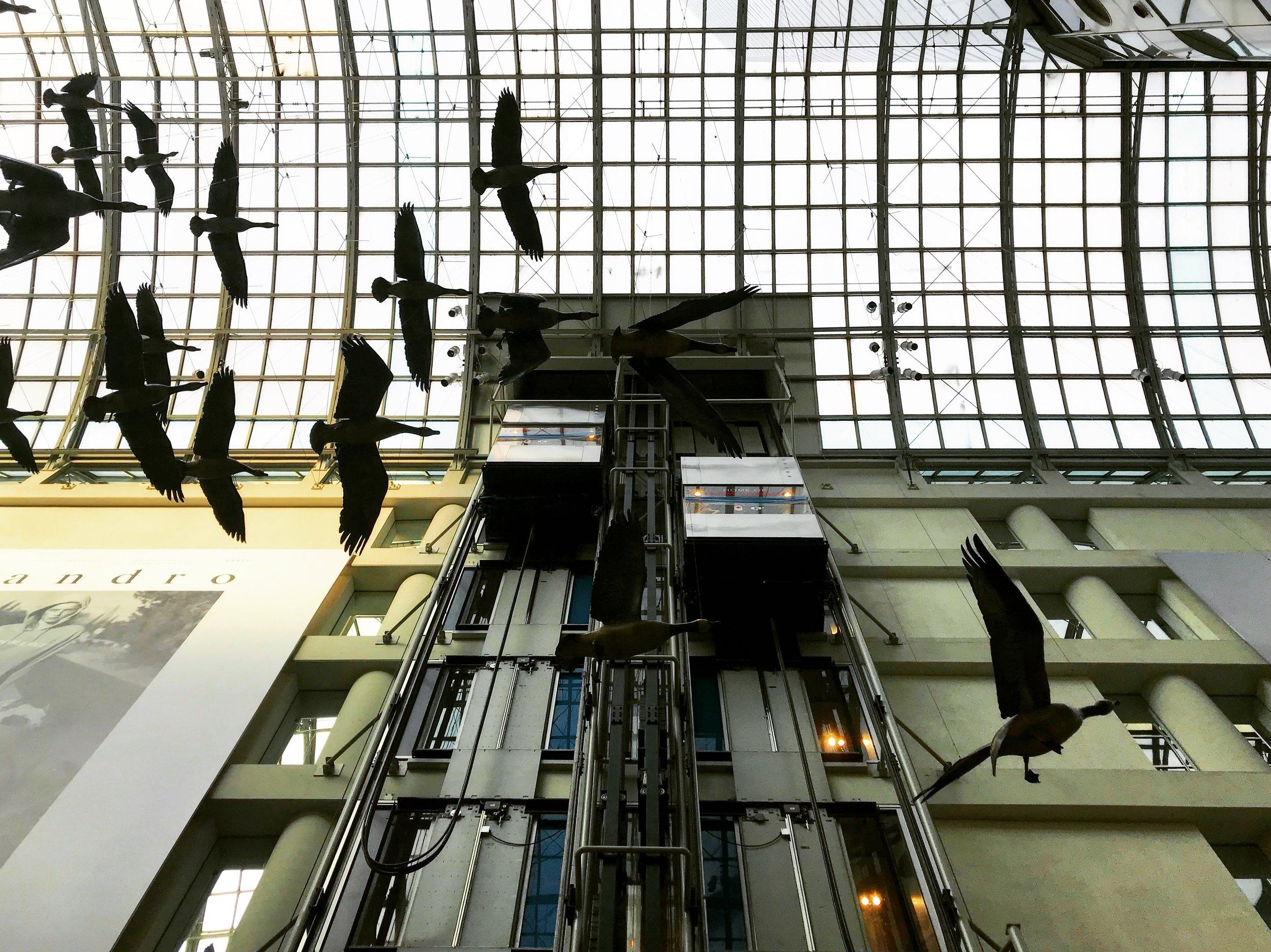 Toronto Eatons Centre Traction Elevators