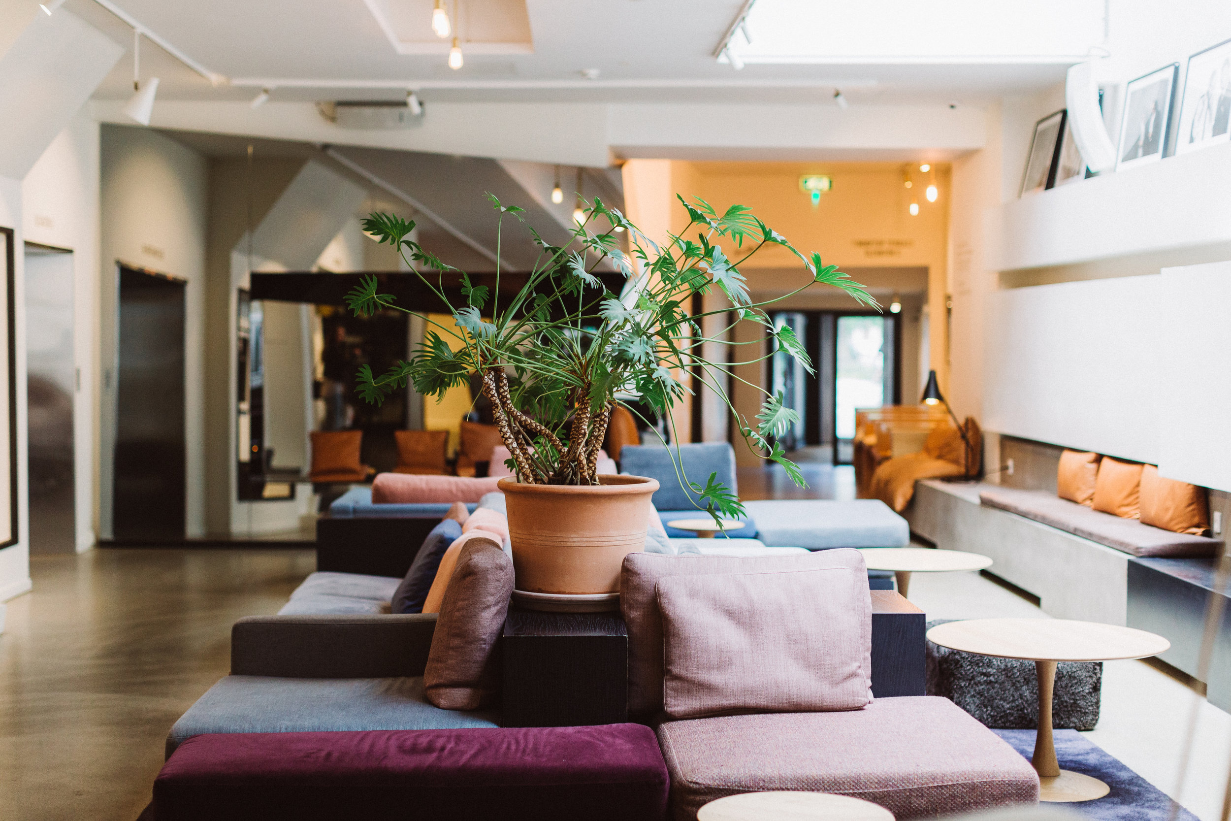 Hotel-SP34-Lobby-04-1.jpg