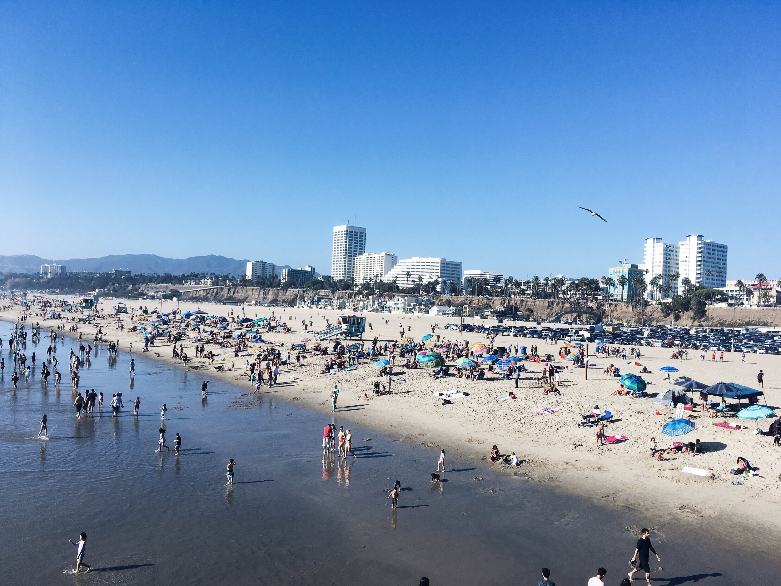 Check the blog for more info about Santa Monica
