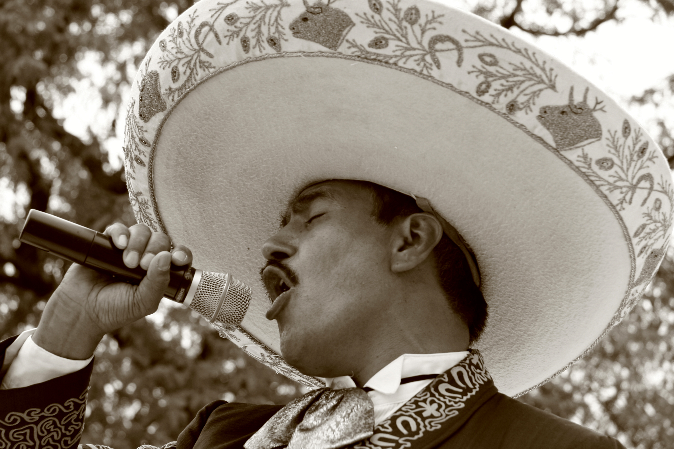 Mariachi_singer,_Chicago,_Illinois,_USA_-_20060814.jpg