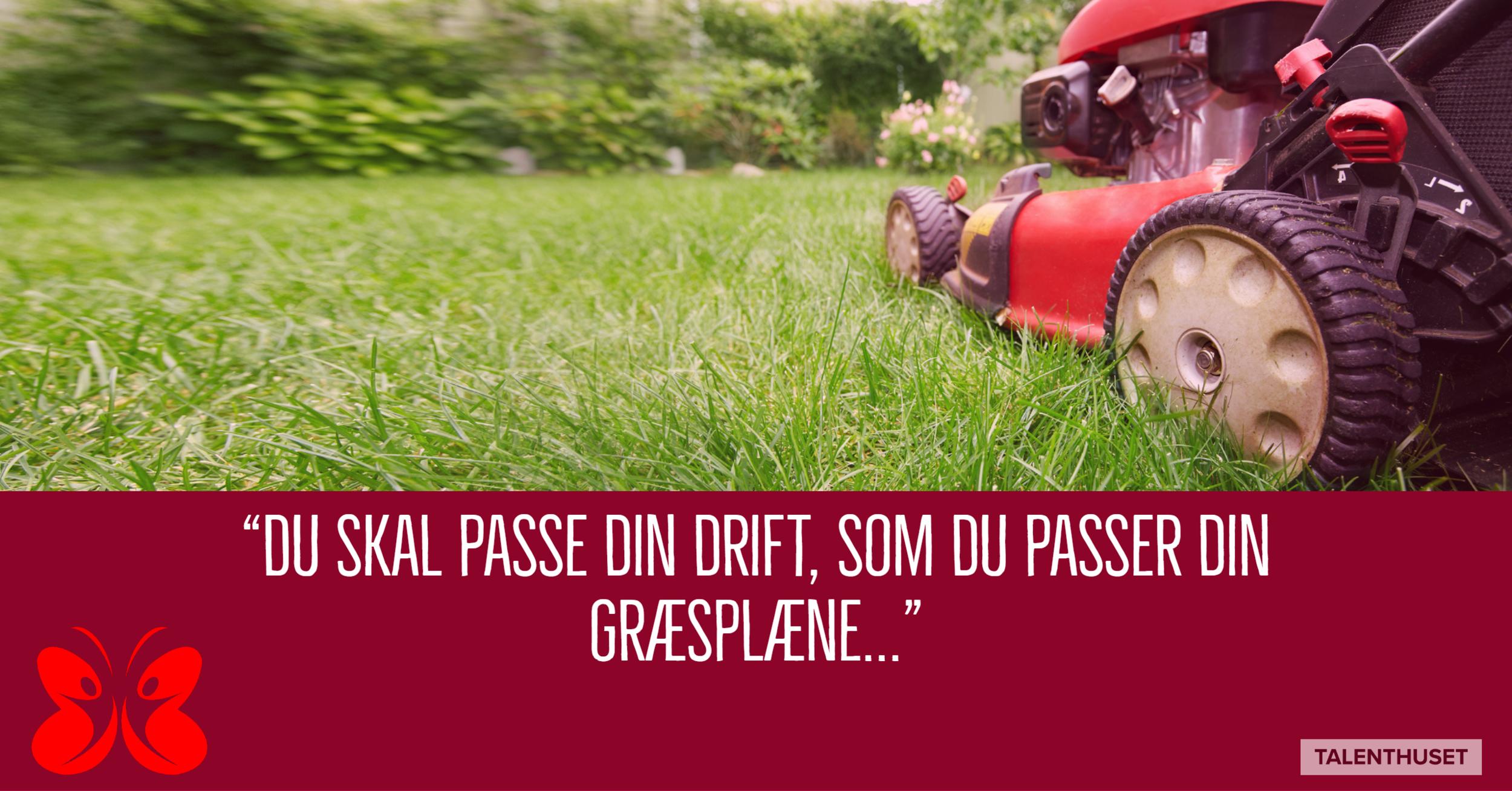 slå dit græs.png