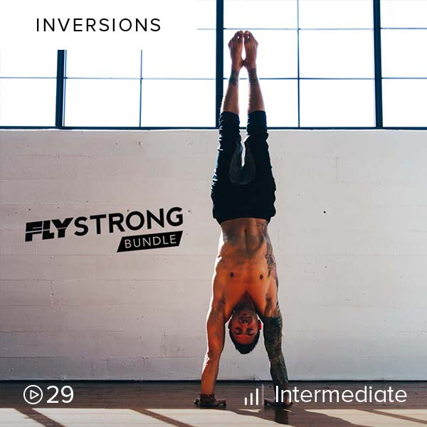Flystrong Bundle    Develop the most successful handstand and arm balance practice imaginable with this intense, challenging, and incredibly fun three-phase program.