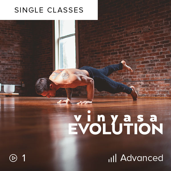 Vinyasa Evolution    Build strength, have fun, and test out your handstand and arm balances in this True Strength Evolution-inspired 60-minute Vinyasa class.