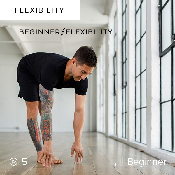 Beginner Flexibility    This series is a fun, safe, and effective way to improve your range of motion, regardless of your perceived limitations.
