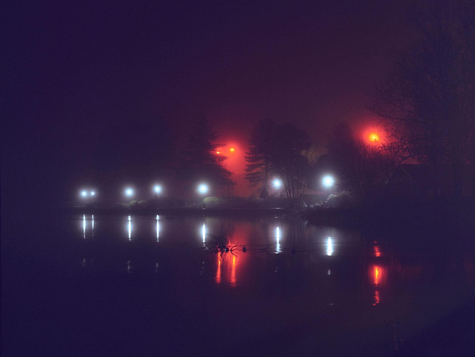 a misty night - c