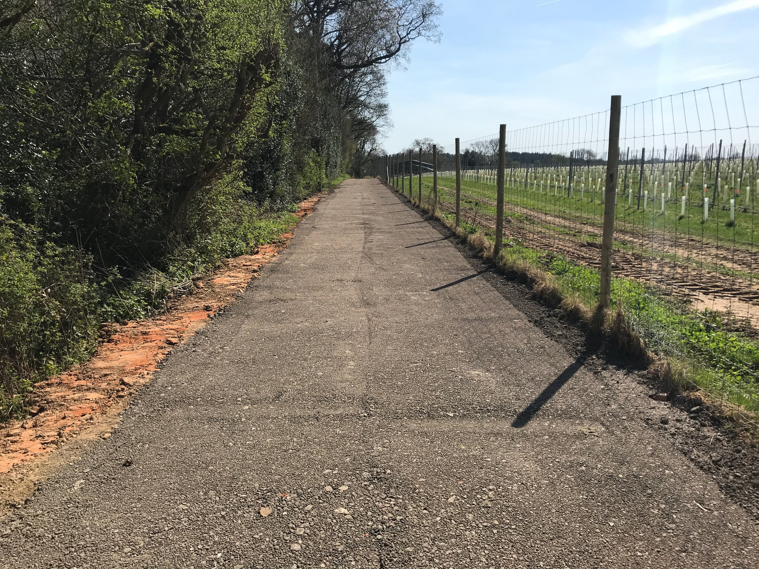 Hardcore has been laid and the new path has been completed along the side of the vineyard.