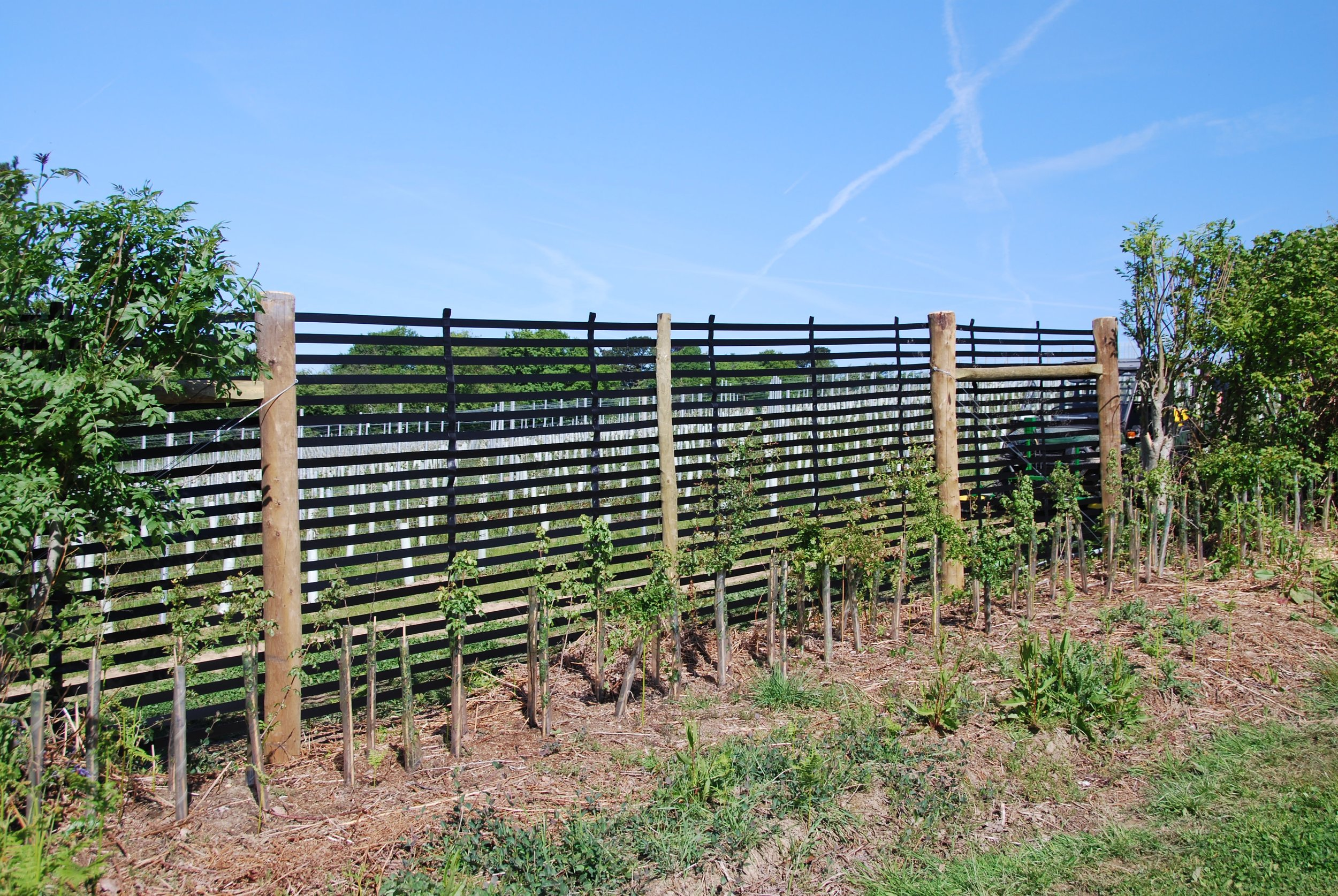 Wind breaks have been installed in various places across site where vines are particularly exposed.