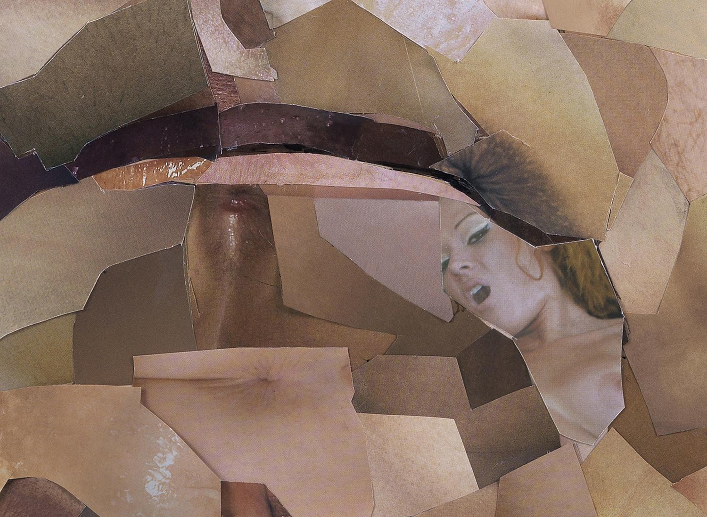 Bush Detail 1.jpg