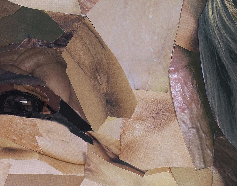 Bush Detail 2.jpg