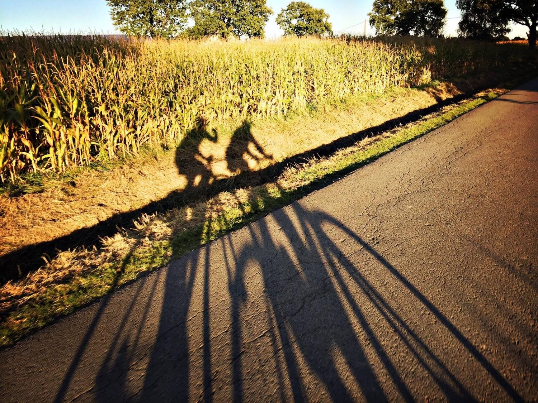 55/66 km - BLAUW/GROEN - De vaste woensdagavond-rit voor groep groen en blauw. 55 km, via Deurne en Borsbeek richting Netekanaal en terug langs Duffel en Boechout. Bij langere zomeravonden 66 km, met extra lus via Viersel. De route van 66 km wordt ook op zondag (9u45) gereden.