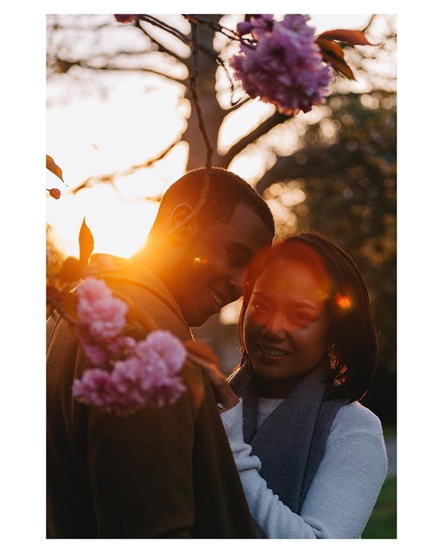 Had the absolute pleasure of celebrating these two yesterday at their engagement party! It was lovely to see some of these photos prints in really life too ♥️ . . . . . #discoverportraits #letsgetlost #inspiremyinstagram #sdmfeatures #photographylover #majestic_people #artofvisuals #moodyports #agameoftones #profile_vision #thewildnesstonic #quietinthewild #rsa_portraits #magic_shots #whimsicalwonderfulwild #portraitpage #photographyeveryday #portraitgames #postthepeople #portraitmeet #moodygrams #visualgang #collectivelycreate #houseoftones #discovermore #gowildlyandslow #holdthemoment #awakethelight #forgeyourownpath