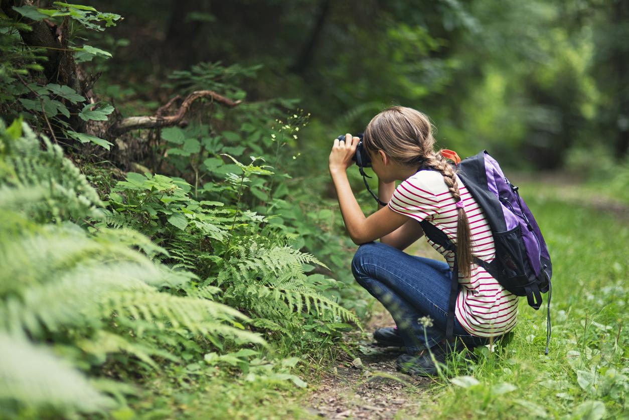 exploring-nature-1.jpg