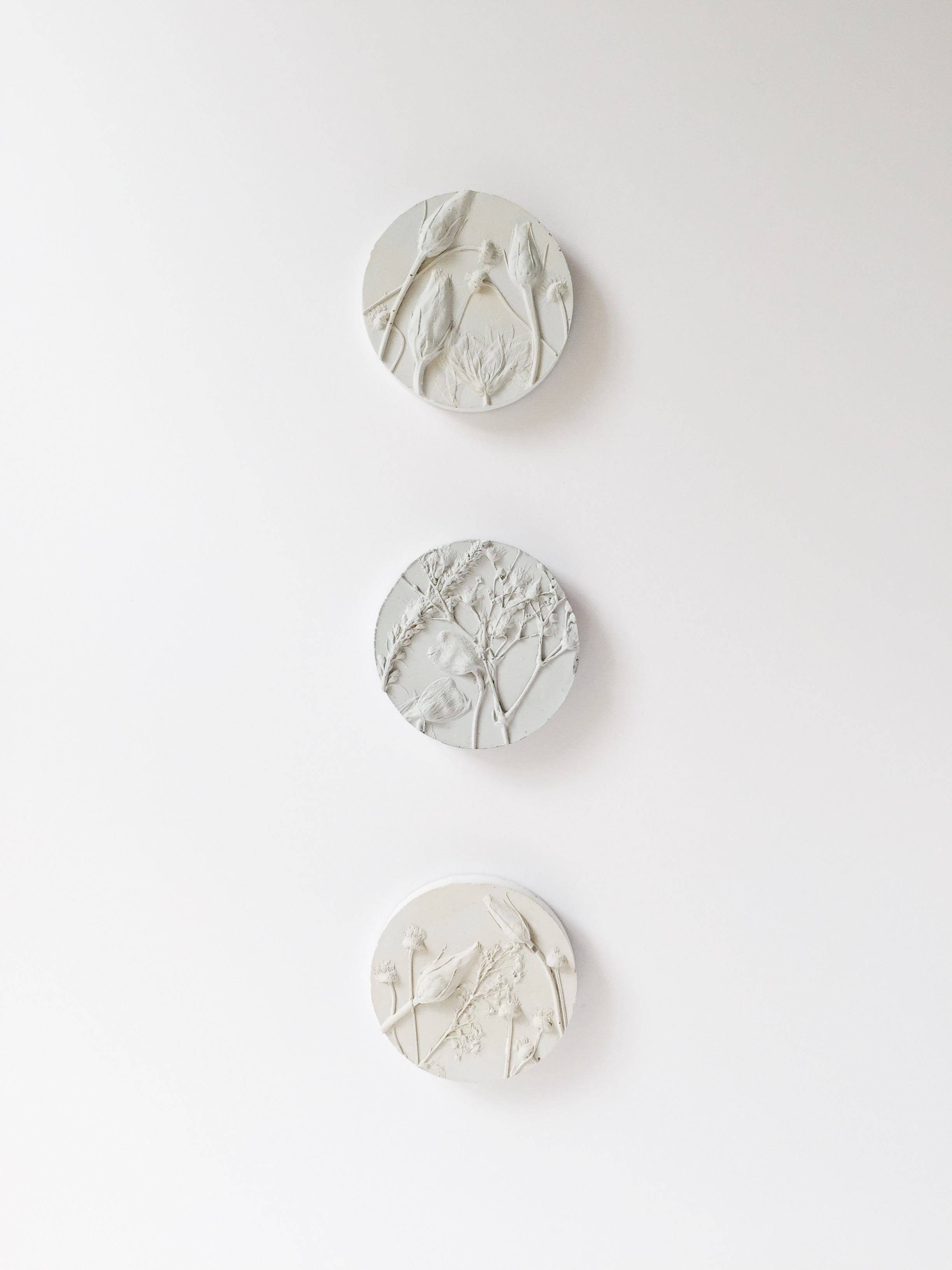 Botanical Sculptures - Raychelle Collection