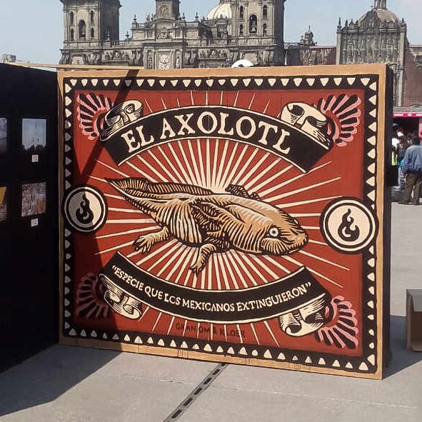 Exhibit, Zócalo (Photo Álvaro Manzano)