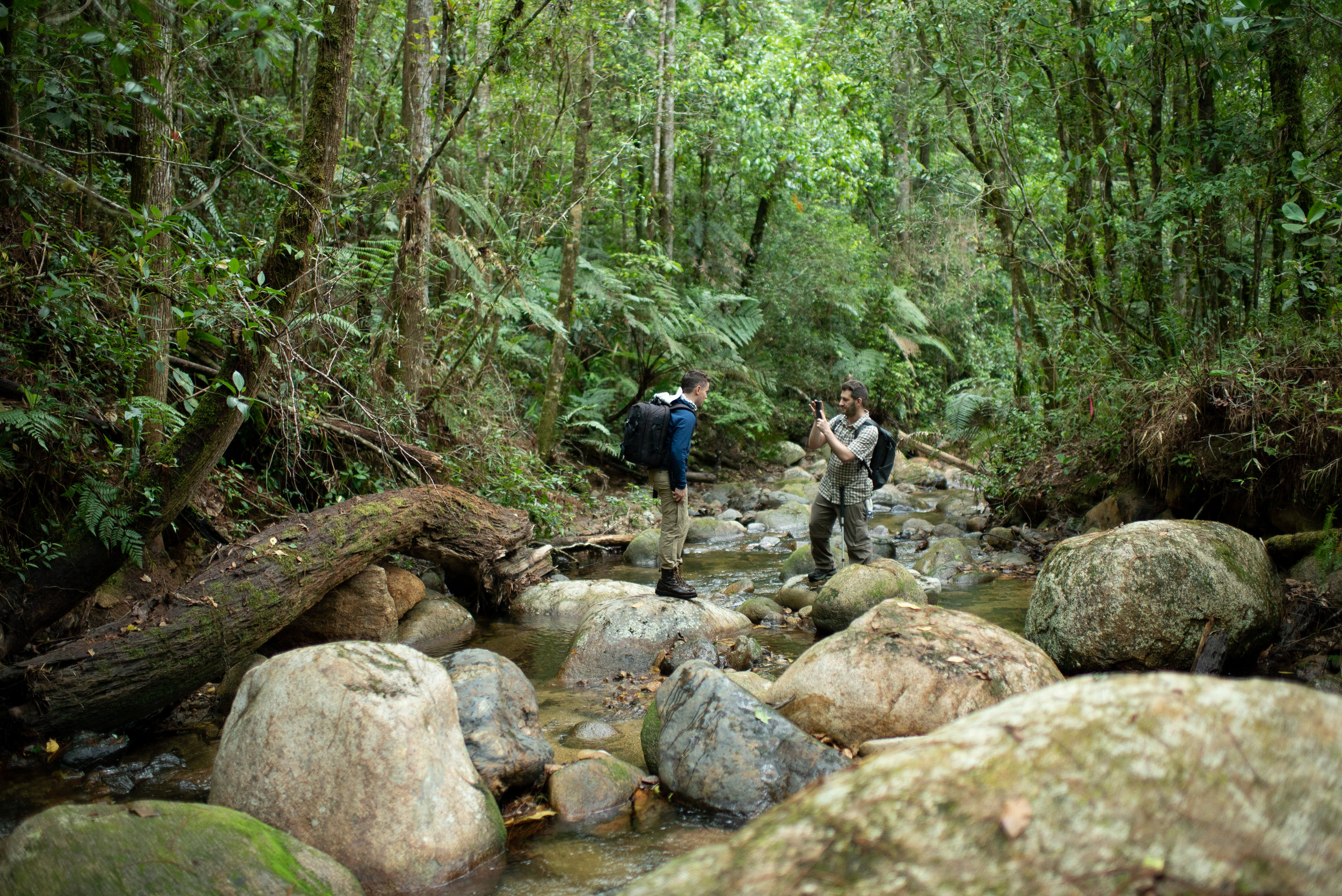 Jonathan Kolby and Ben Mirin in Cusuco National Park