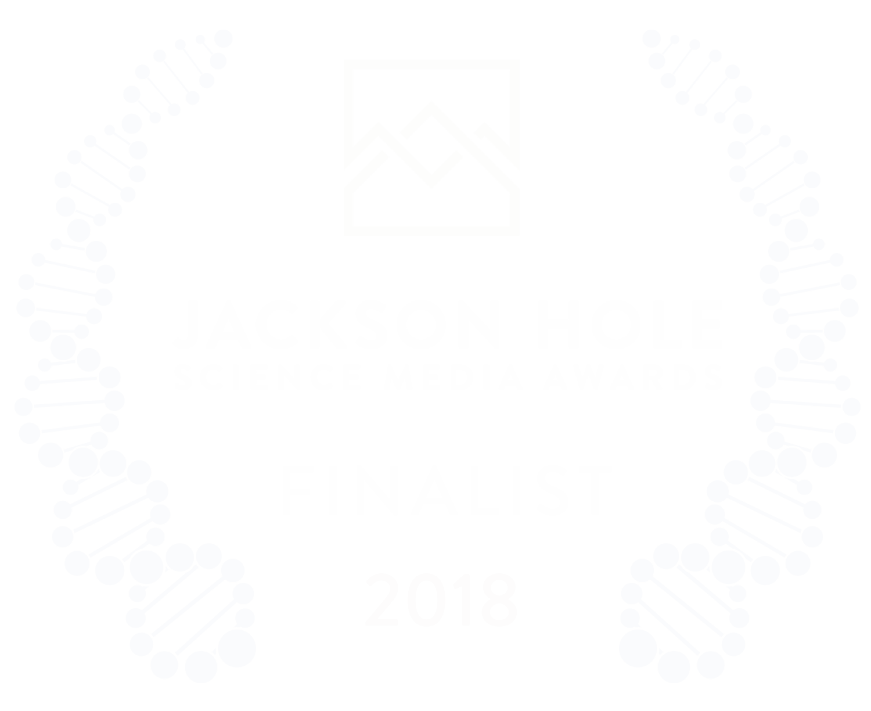 2018SMA_FinalistLaurels_White.png