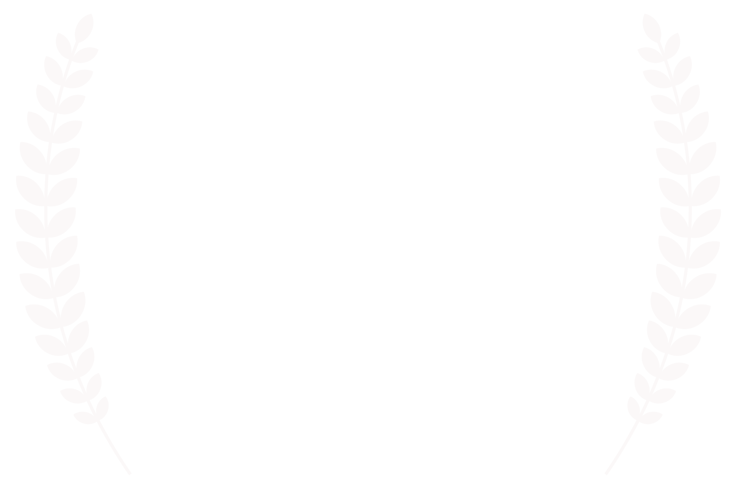 FINALIST-WildlifeVaasaFestival-InternationalNatureFilmFestival-2016 copy.png