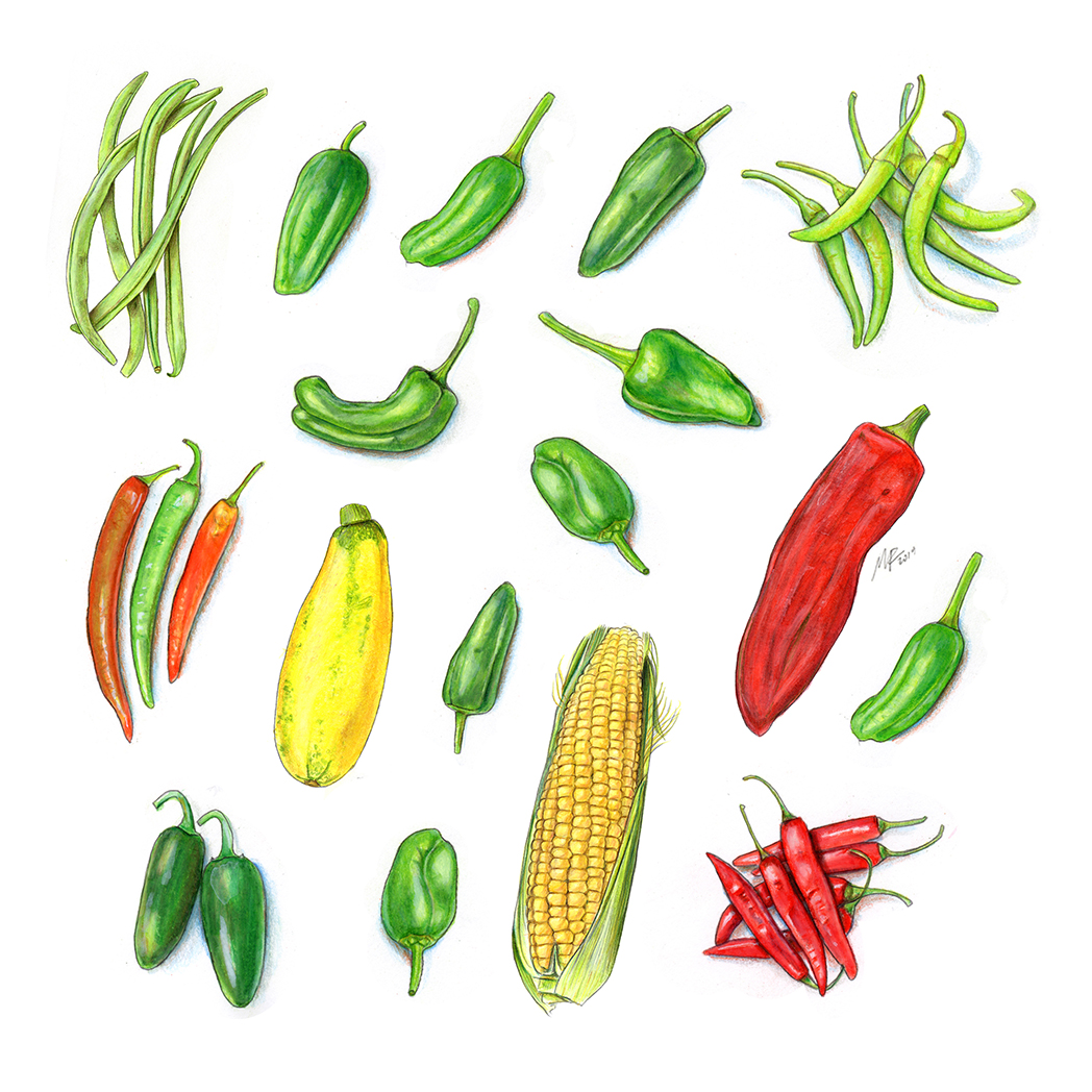 Peppers_composition_72DPI.jpg