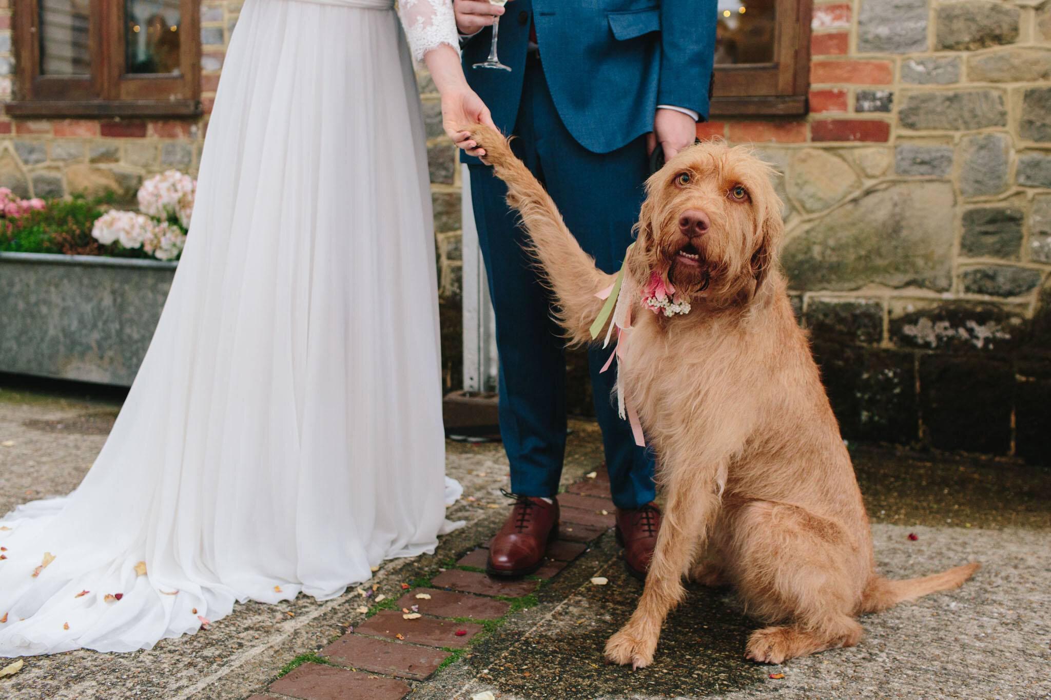 Jess and Lewis - Wedding-260.jpg